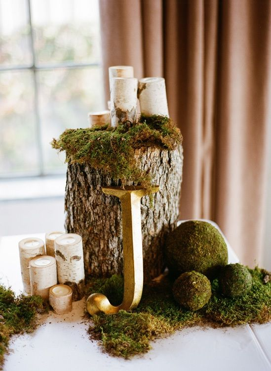 Wood Stump Display Woodland Wedding Moss Centerpieces