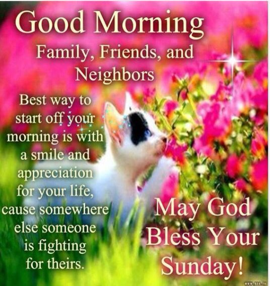 Good Morning Family Quotes : Good morning sunday friends family and neighbors