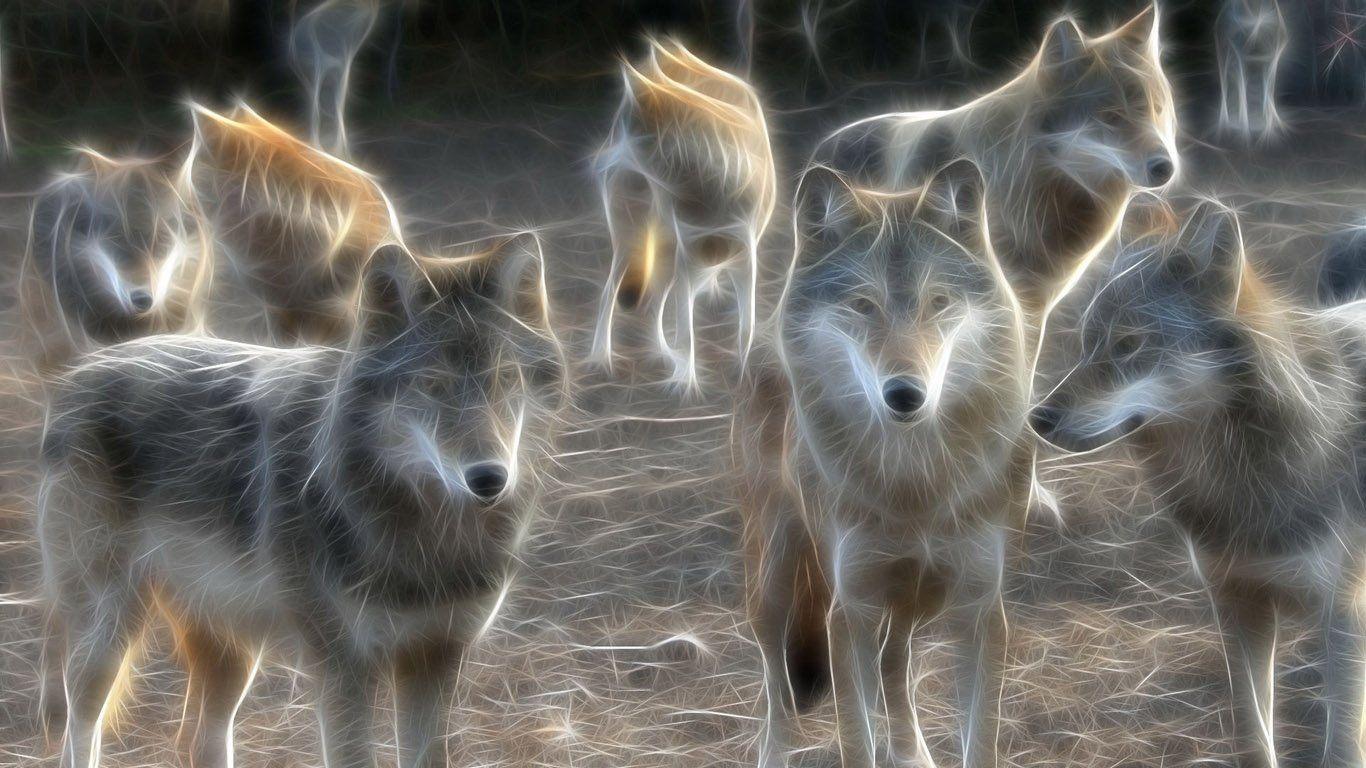 картинки стай волков для рабочего стола предстоит провести выезде