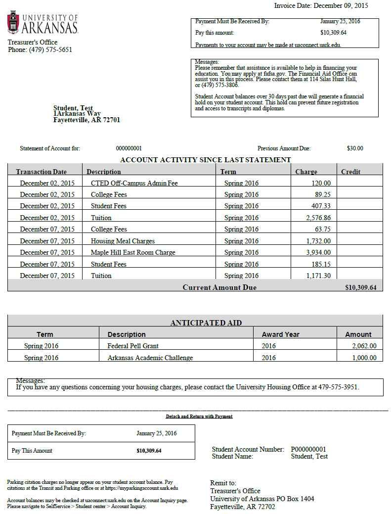 Credit card statement template and credit card statement
