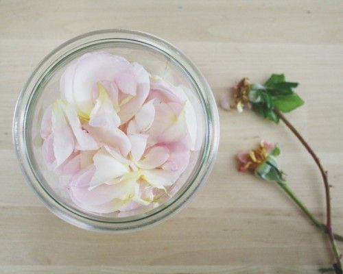 How To Make Your Own Rosewater | Shelterness
