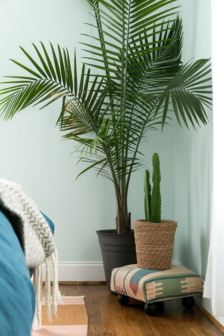 Master Bedroom Story With Behr Fresh Exchange Faux Plants Decor Bedroom Plants Decor Faux Plants #palm #tree #decor #for #living #room