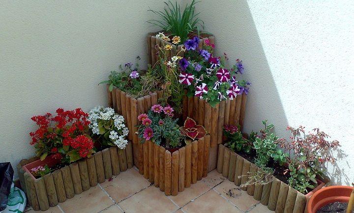 Plantas para macetas grandes | jardin | Pinterest | Gardens