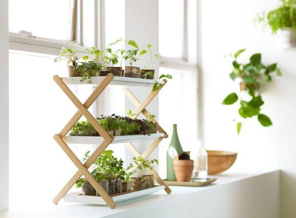 Shoe rack as plant rack