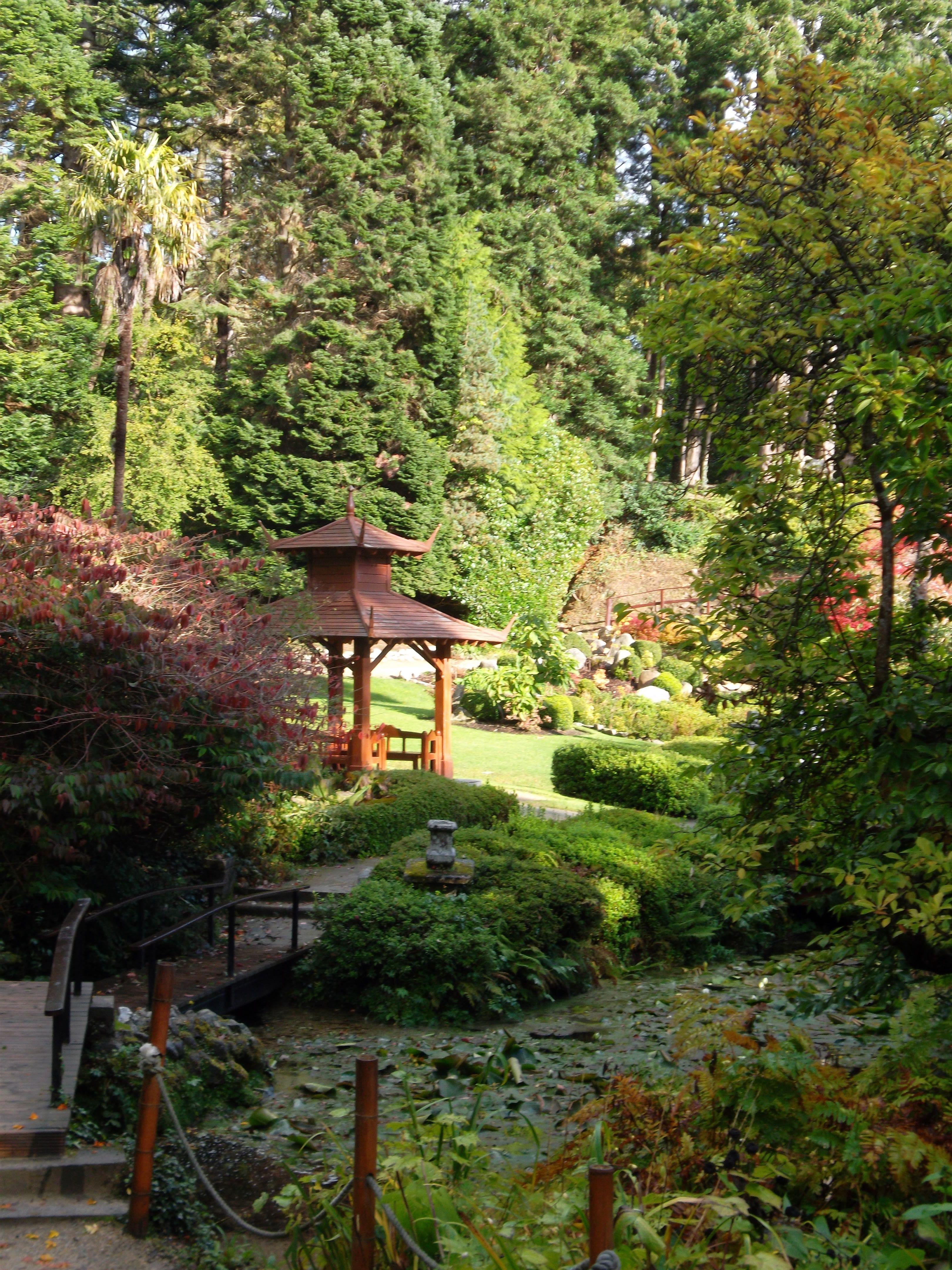 Powerscourt\'s asian garden | Garden ideas | Pinterest | Asian garden ...