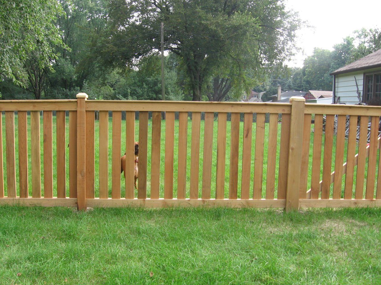 Chain Link Cardinal Fence Supply Inc Garden Fence Panels Backyard Fence Decor Front Yard Fence