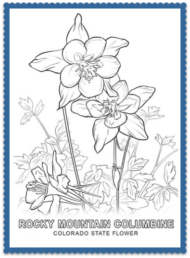 Colorado State Flower Coloring Page - Print or Color Online - Rocky Mountain Columbine