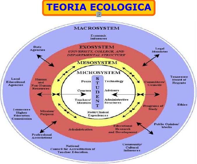 Pin By Masoume Kiani On Systems Theory Ecological Systems Theory Social Work Systems Theory