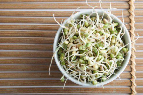 4. Germogli di fagiolo - 25 alimenti che può ri-crescere Yourself da cucina Ritagli