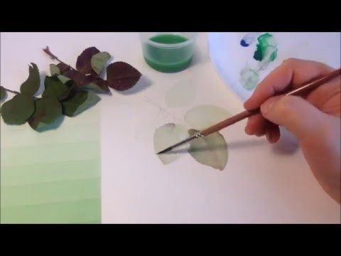 How To Paint Rose Leaves With Watercolors Watercolor Video