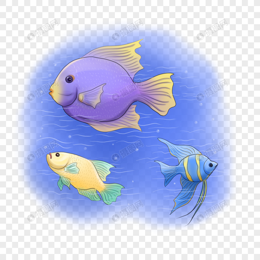 Fresh Fish In The Sea Fish Clipart Sea Clipart Fish Png Transparent Clipart Image And Psd File For Free Download Sea Fish Fish Clipart Fish