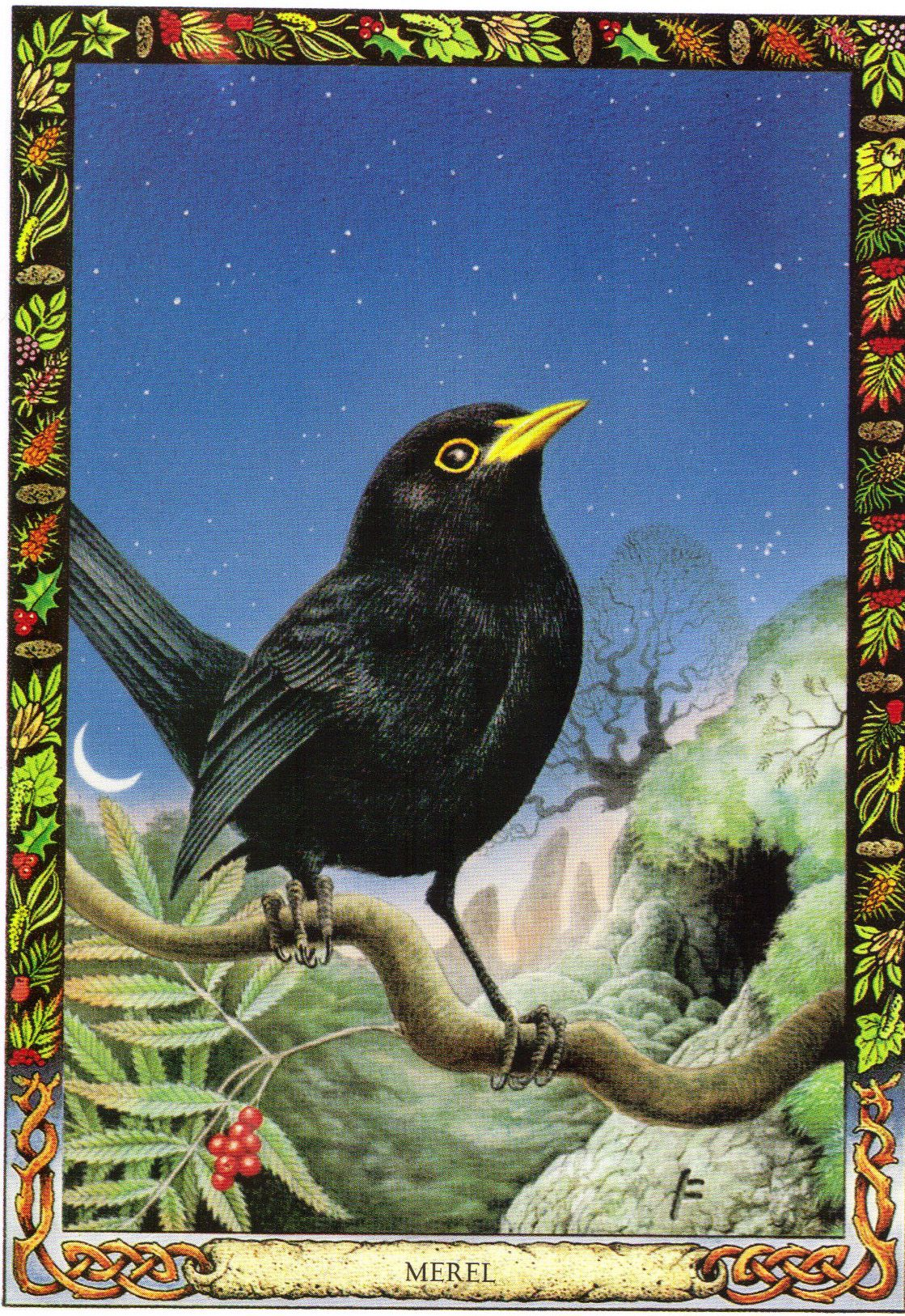Blackbird The Druid Animal Oracle By Stephanie And Phillip Carr Meaning Enchantment The Gateway Animal Tarot Animal Totem Spirit Guides Animal Symbolism