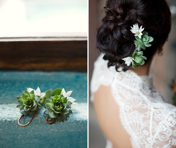 Attach smaller varieties to pins or clips and nestle them in your hair for a desert-inspired updo.