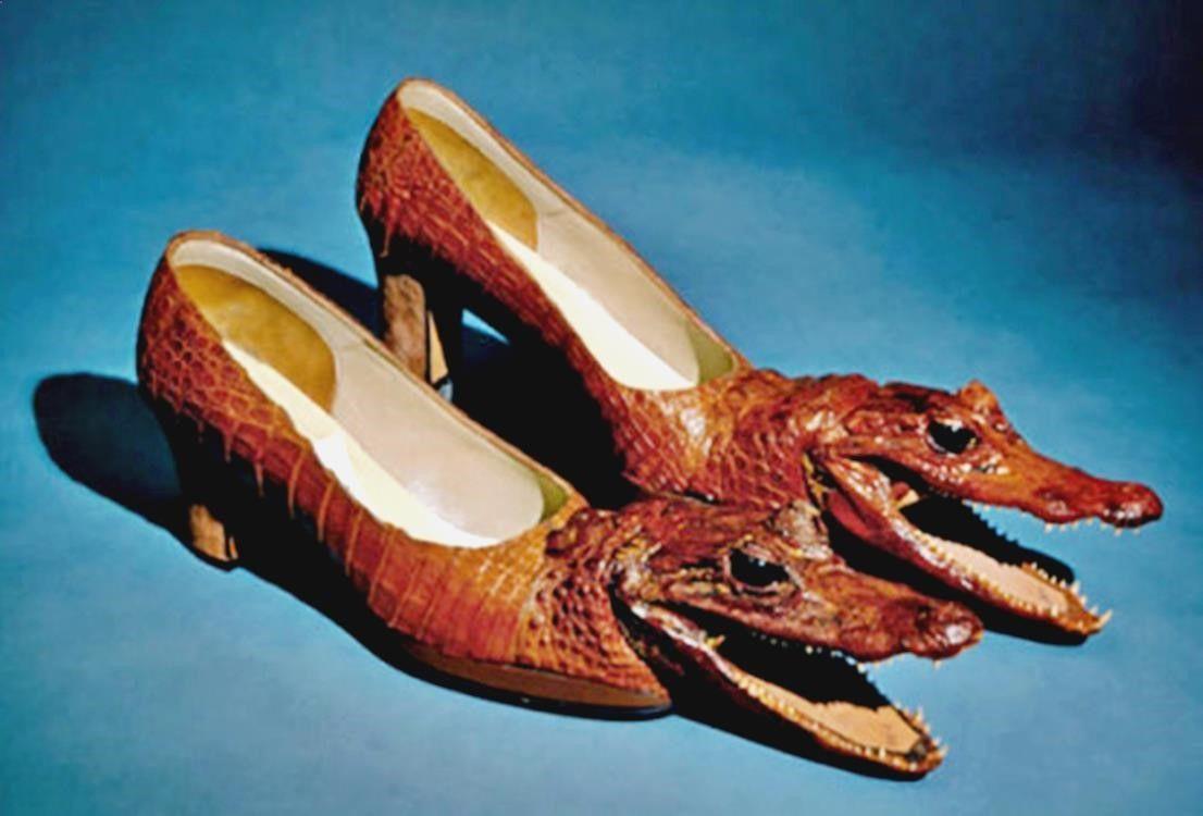 Pin De Alejandro C En Animales Zapatos Locos Zapatos Extranos Y