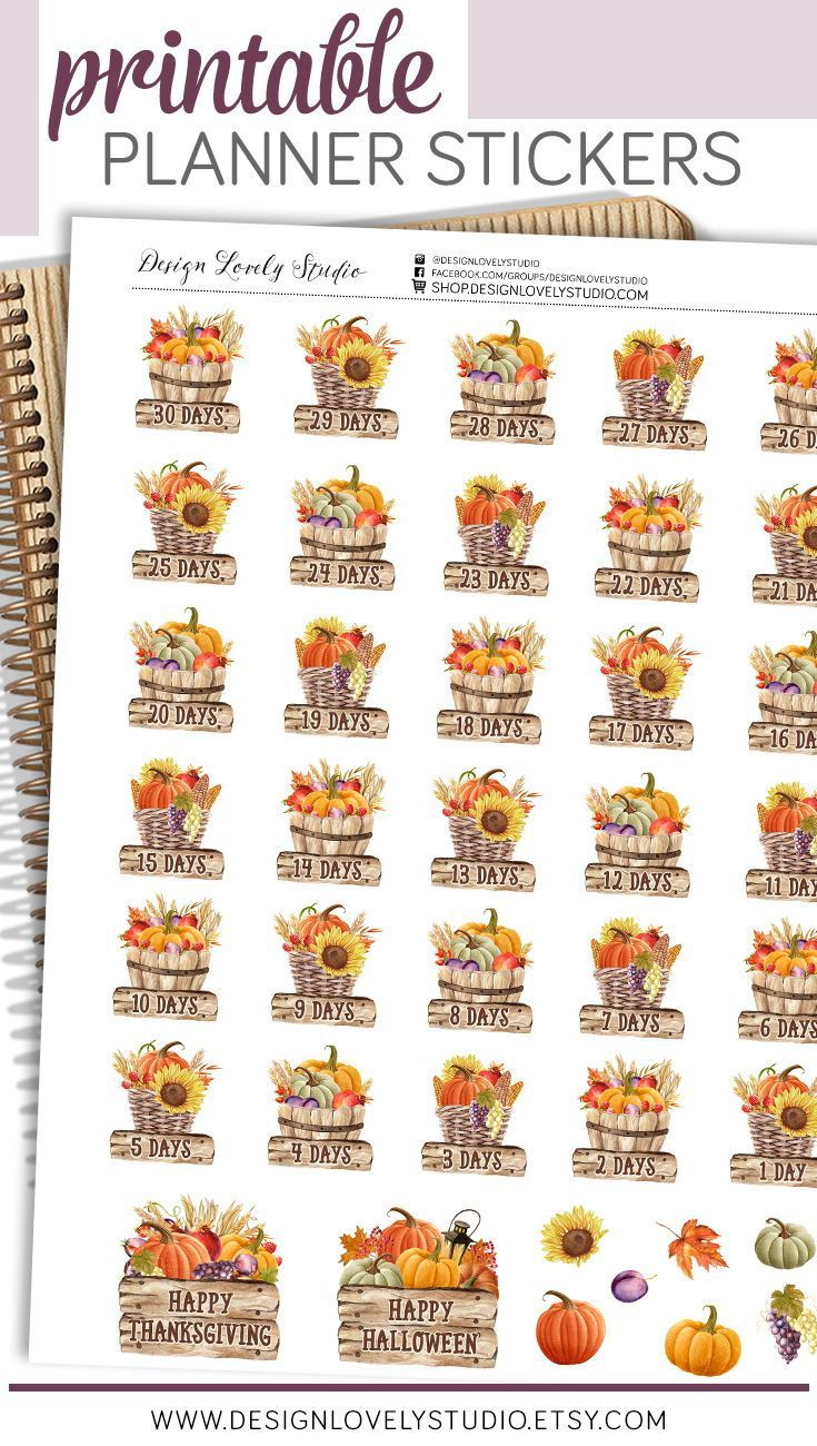 Thanksgiving Countdown Printable Planner Stickers (can be