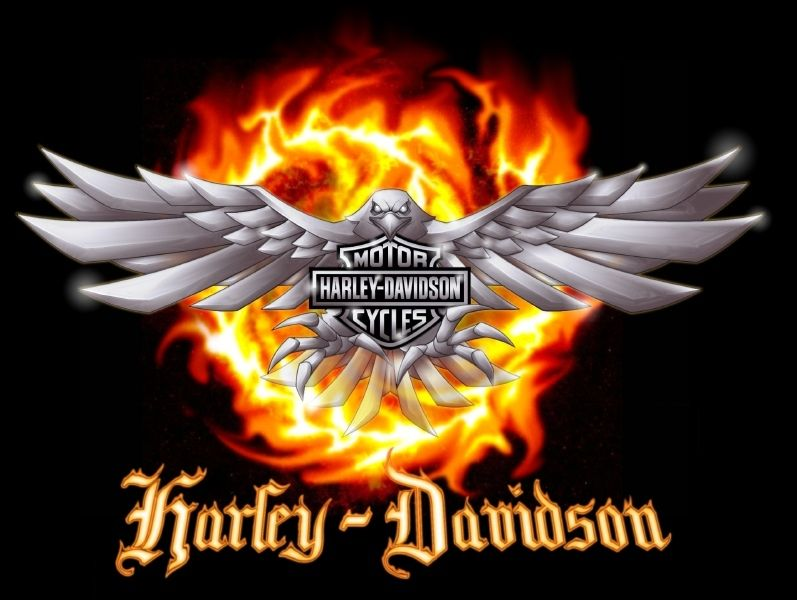 History Of Harley Davidson All About Motorcycle Gear The Biker Harley Davidson Wallpaper Harley Davidson Logo Harley Davidson