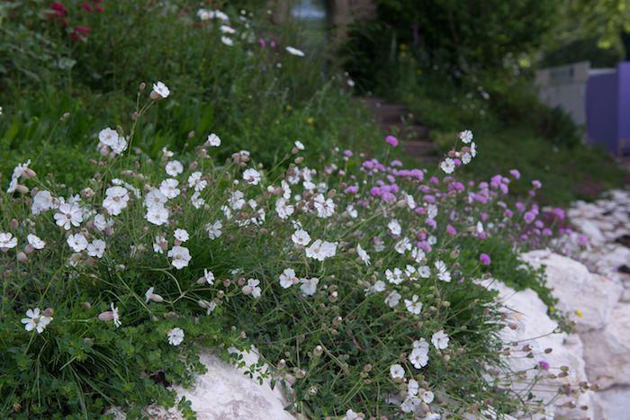 Welcome to Yorkshire Garden by garden designer Tracy ...