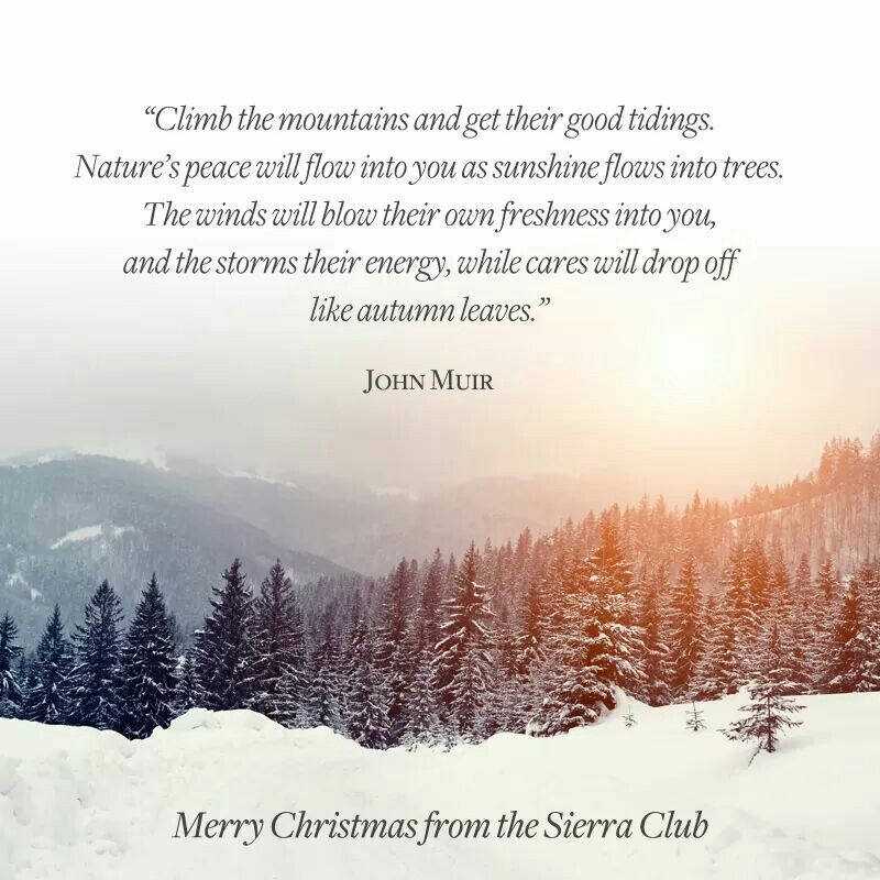 John Muir Quote Winter Pinterest Quotes John Muir Quotes And