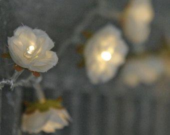 Rose Fairy licht in Magenta lila en Apple witte door PamelaAngus