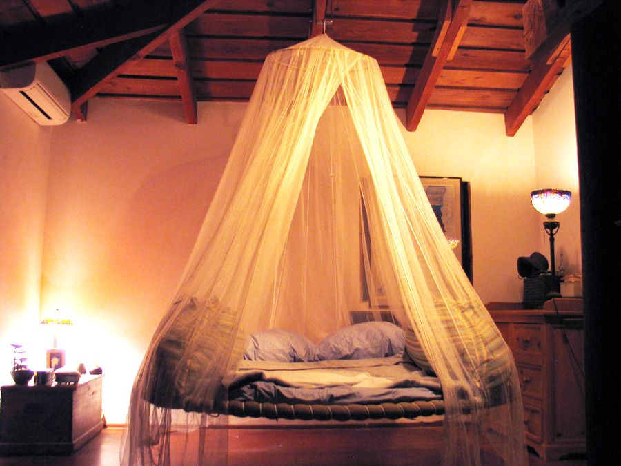 Floating Bed Used As Daybed With Canopy Except Outside Over A
