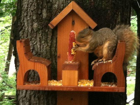 western red cedar squirrel feeder eichh rnchen pinterest. Black Bedroom Furniture Sets. Home Design Ideas