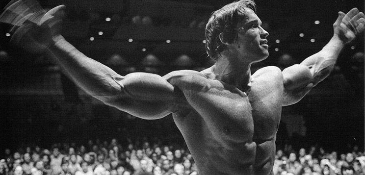Arnold schwarzeneggers blueprint to cut bodybuilder arnold arnold schwarzeneggers blueprint to cut malvernweather Choice Image