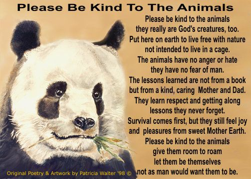 Be Kind To Animals Animal Compassion Quotes Pinterest Animals