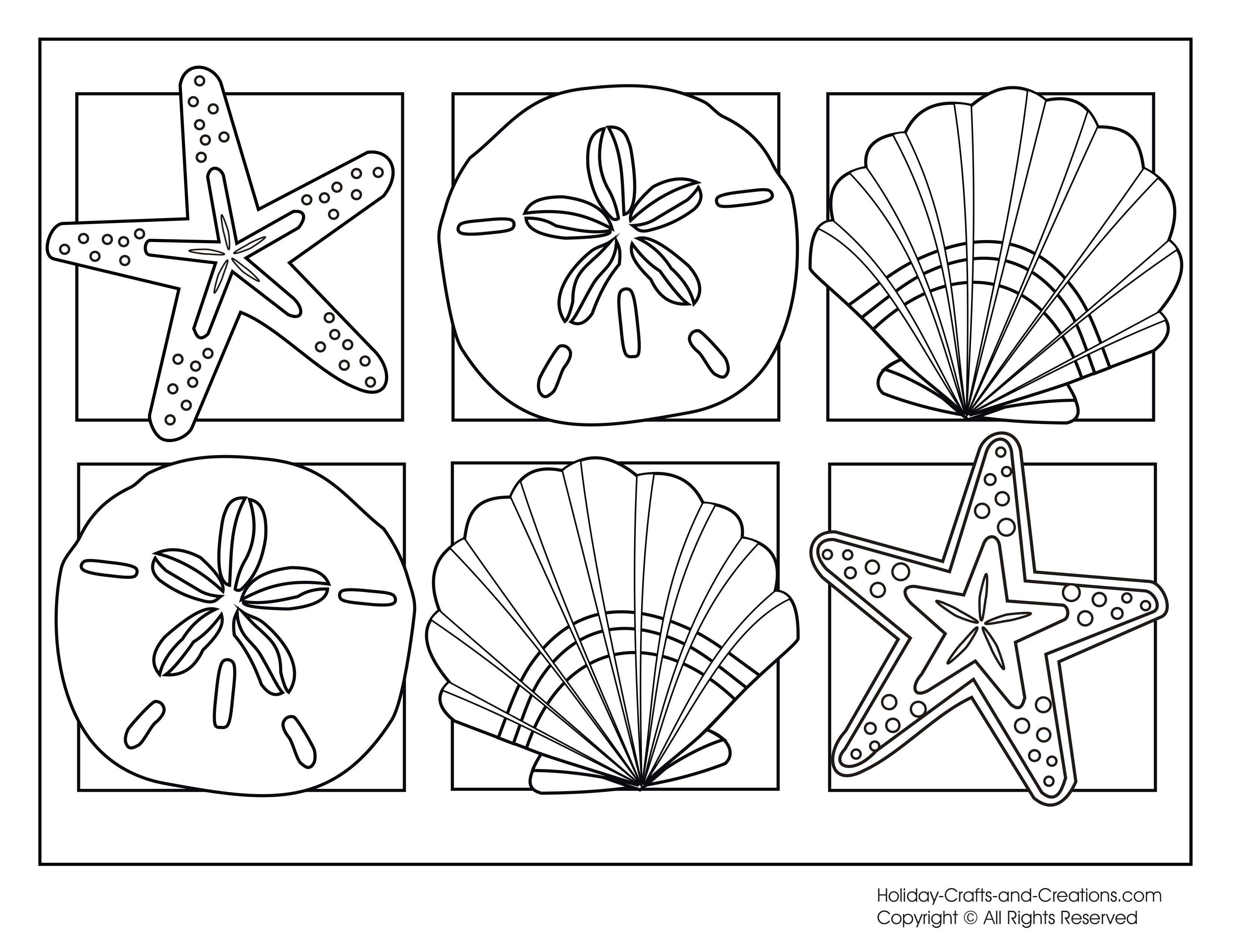Seashells Coloring Page | Summer coloring pages
