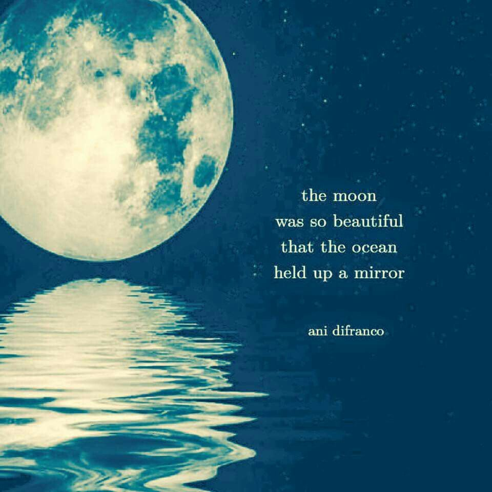 I Love This Quote. The Moon Was So Beautiful That The Ocean Held Up A Mirror
