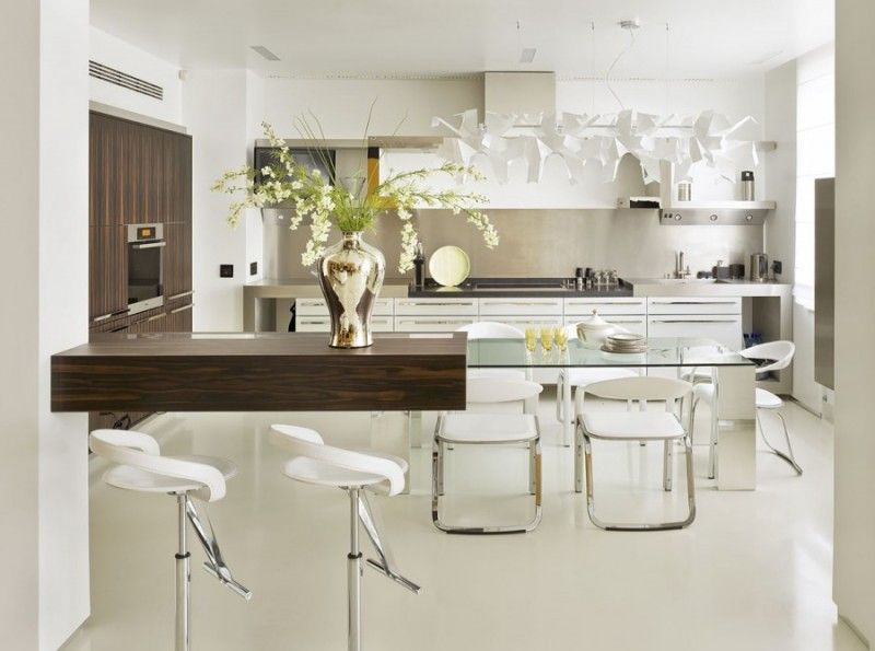 Modern Minimalist Apartment Dining Room And Kitchen Area With Unique Shaped  Contemporary Lamp