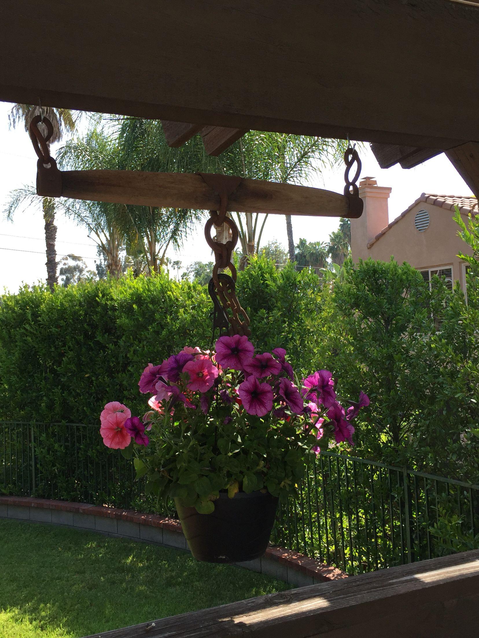 Repurposed oxen yoke into plant hanger   outdoor decorating ...