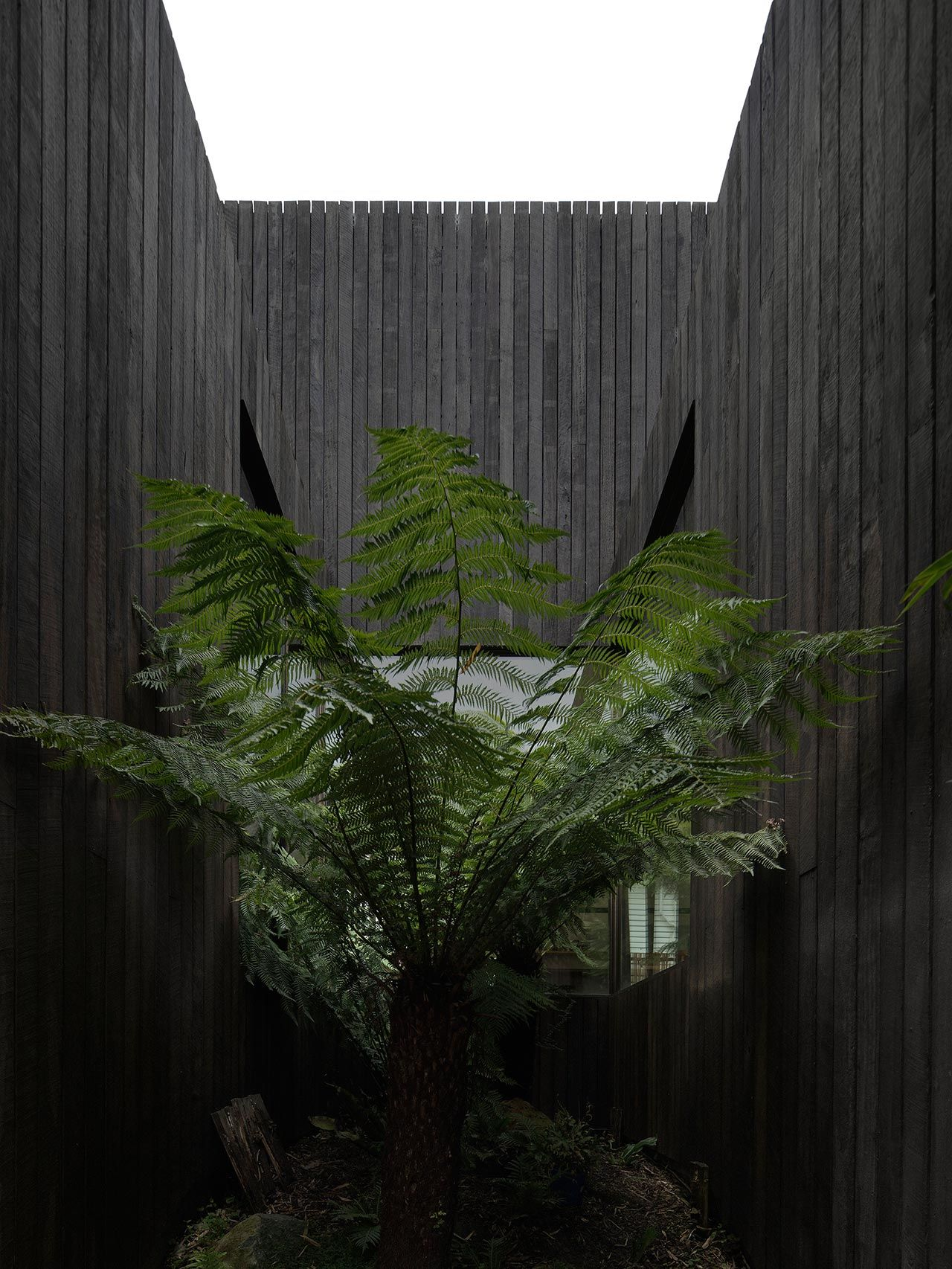 Field Work House A By Walter Walter Yatzer Architecture Australia House Architecture House