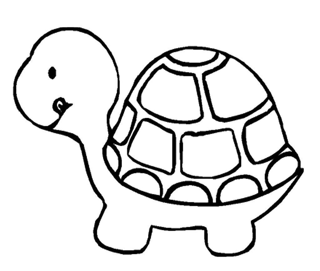 Tortoise Coloring Pages Turtle Coloring Pages Animal Coloring