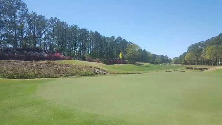 29++ Cedar creek golf club aiken sc viral