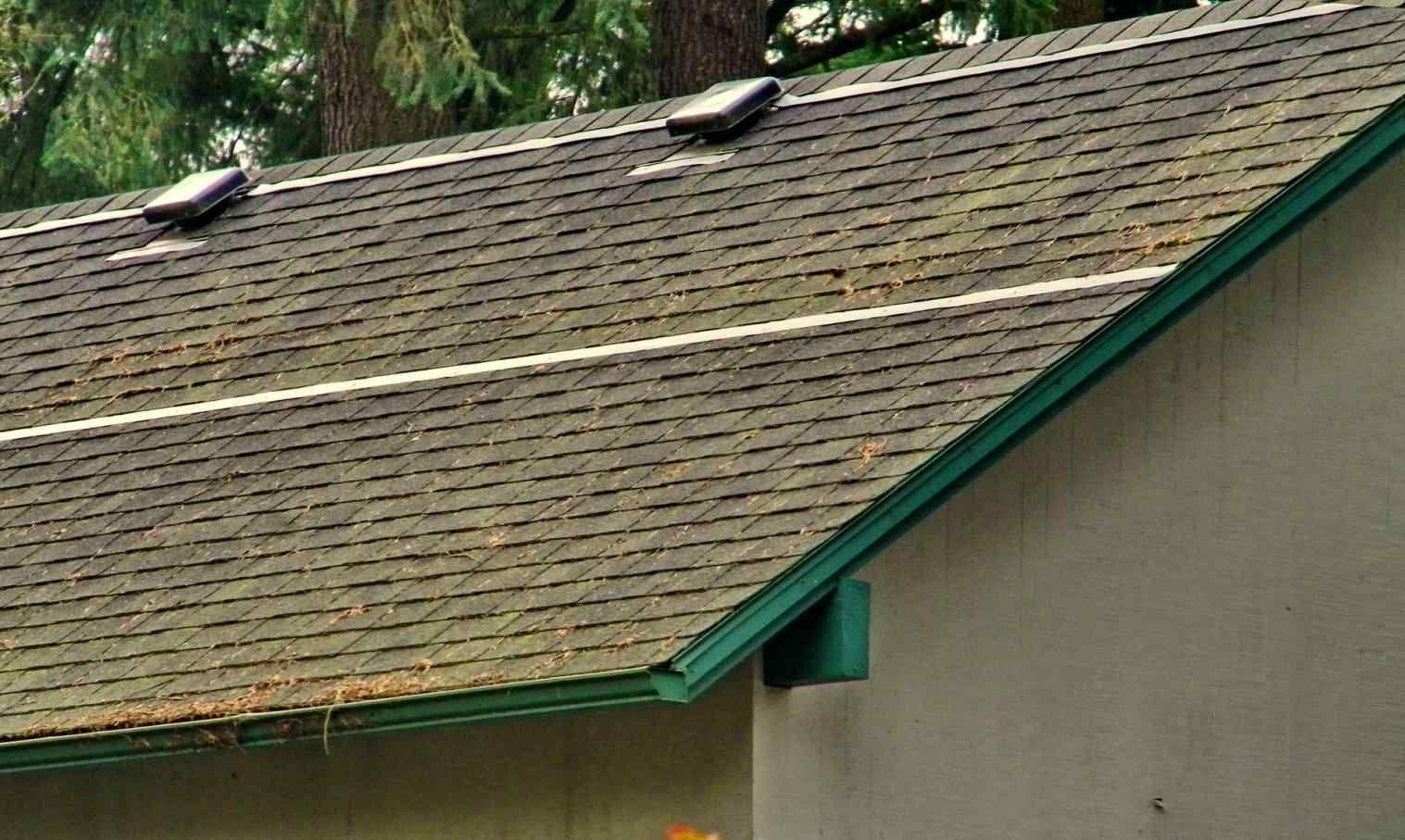 Moss Removal From Roof Shingles Cedar Shingle Roof Roof Shingles Shingling