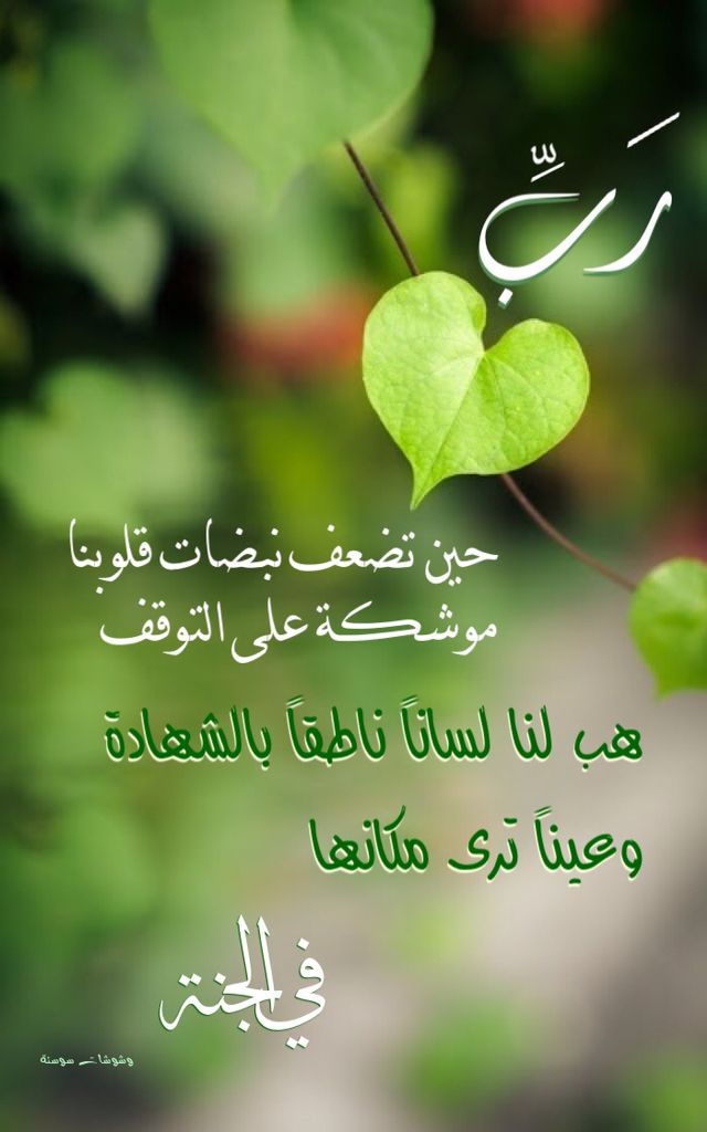 Pin By Reemtelbani On Islam With Images Islamic Messages Sweet Words Islamic Pictures