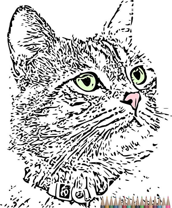 Adult Coloring Pages. Cat Coloring Pages,Instant download printable ...