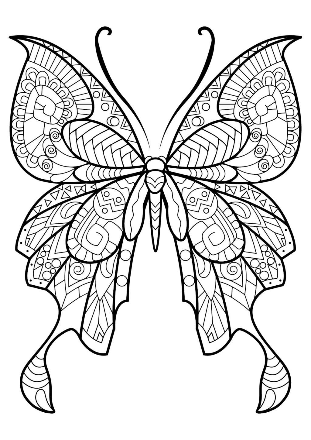 Butterfly Wings Coloring Sheets Designs Trend