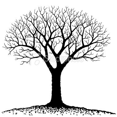 20+ Fall Tree Clipart Black And White