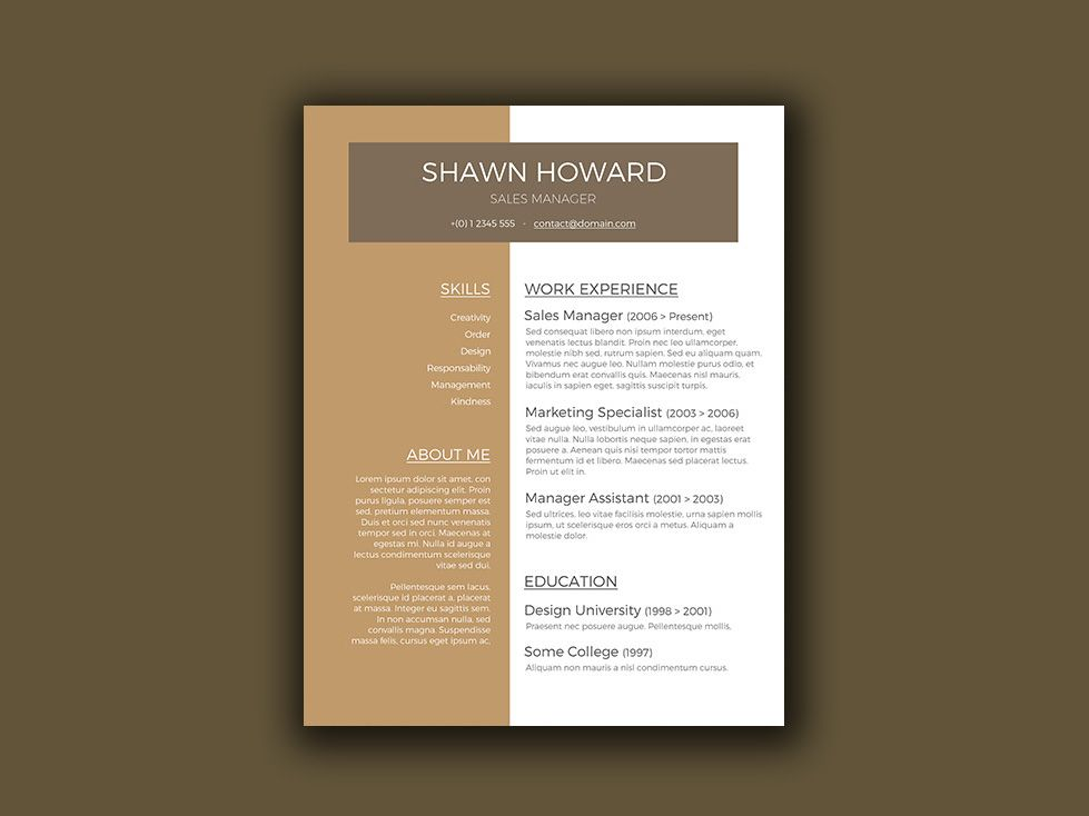 Here is Free creative resume template for sales manager with modern