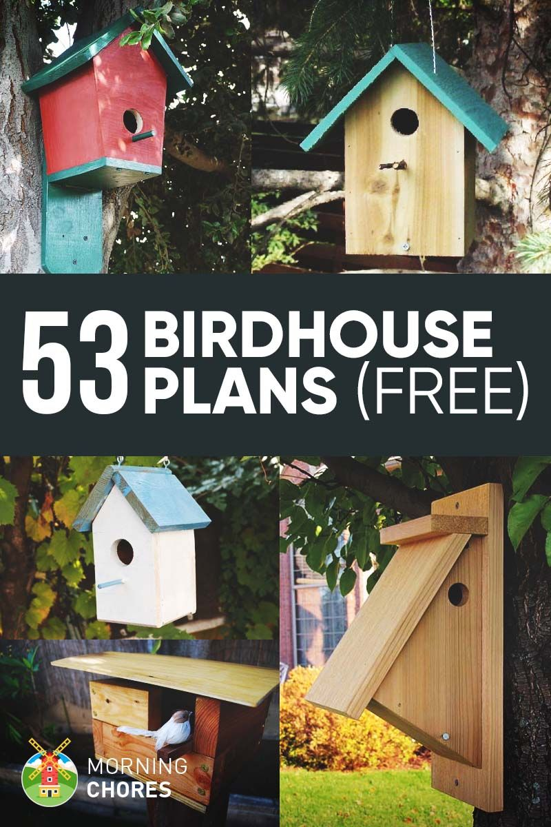 Diy window bird feeder - 53 Free Diy Bird House Bird Feeder Plans That Will Attract Them To Your Garden
