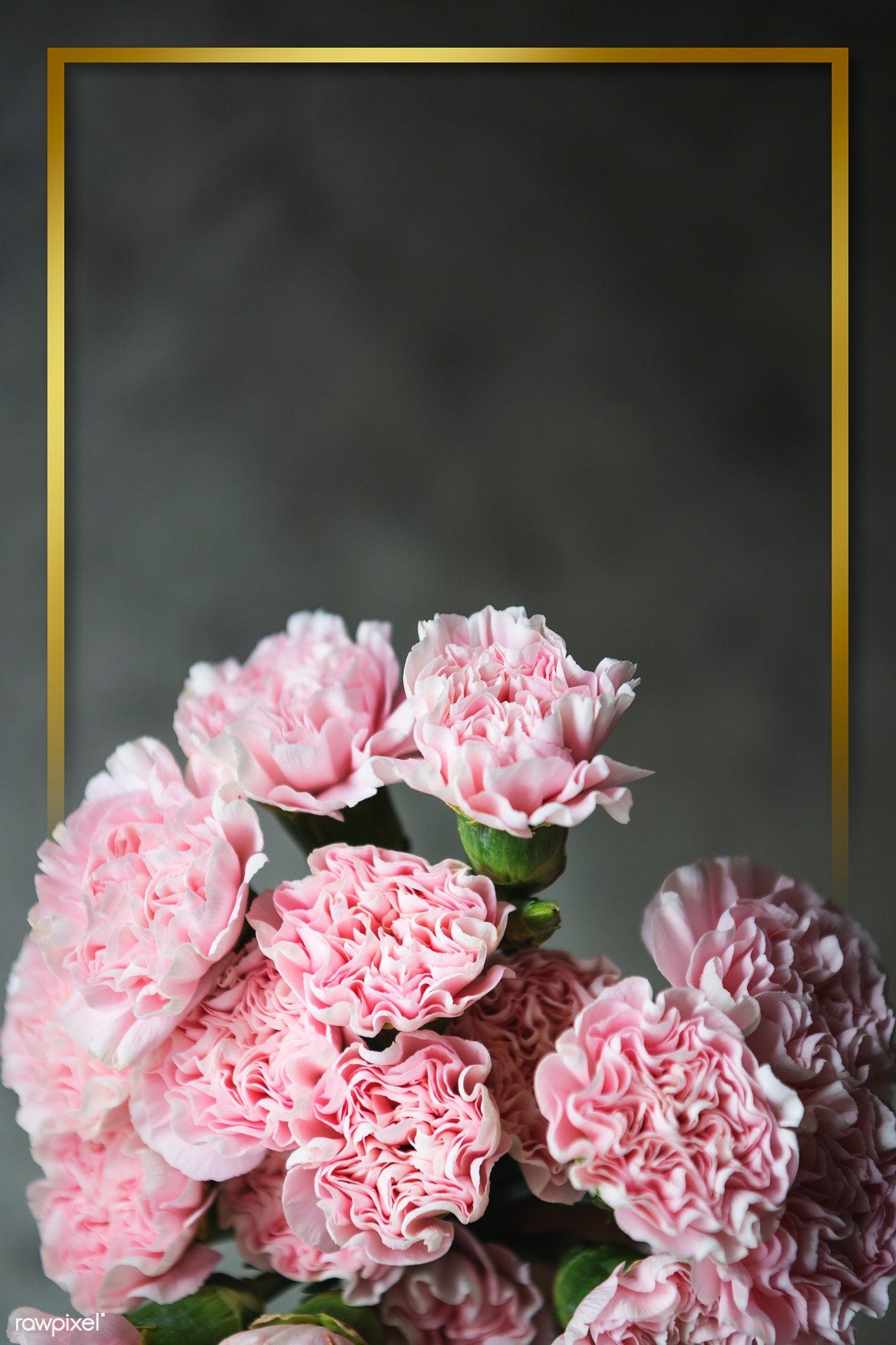 Download Premium Psd Of Golden Frame With Pink Carnation Wallpaper Design Pink Carnations Floral Border Design Carnation Flower
