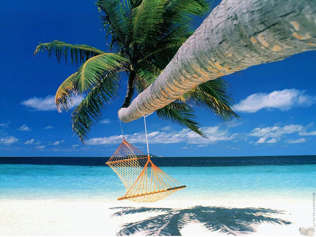 Hammocks on the beach - Find This Pin And More On Philippines Beauty Beach The