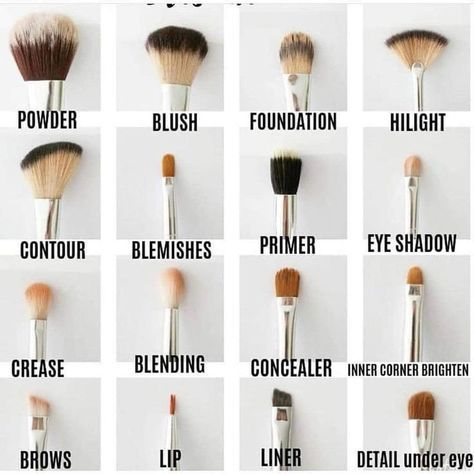 Makeup tips for beginners | how to pick the right makeup brush using this makeup brush guide. #makeup #makeuptips #beauty #beautytips #beautymakeup #brushes #BeginnerMakeupSimple #MakeUpOrange  #MakeUpSilver  #MakeUpWisuda