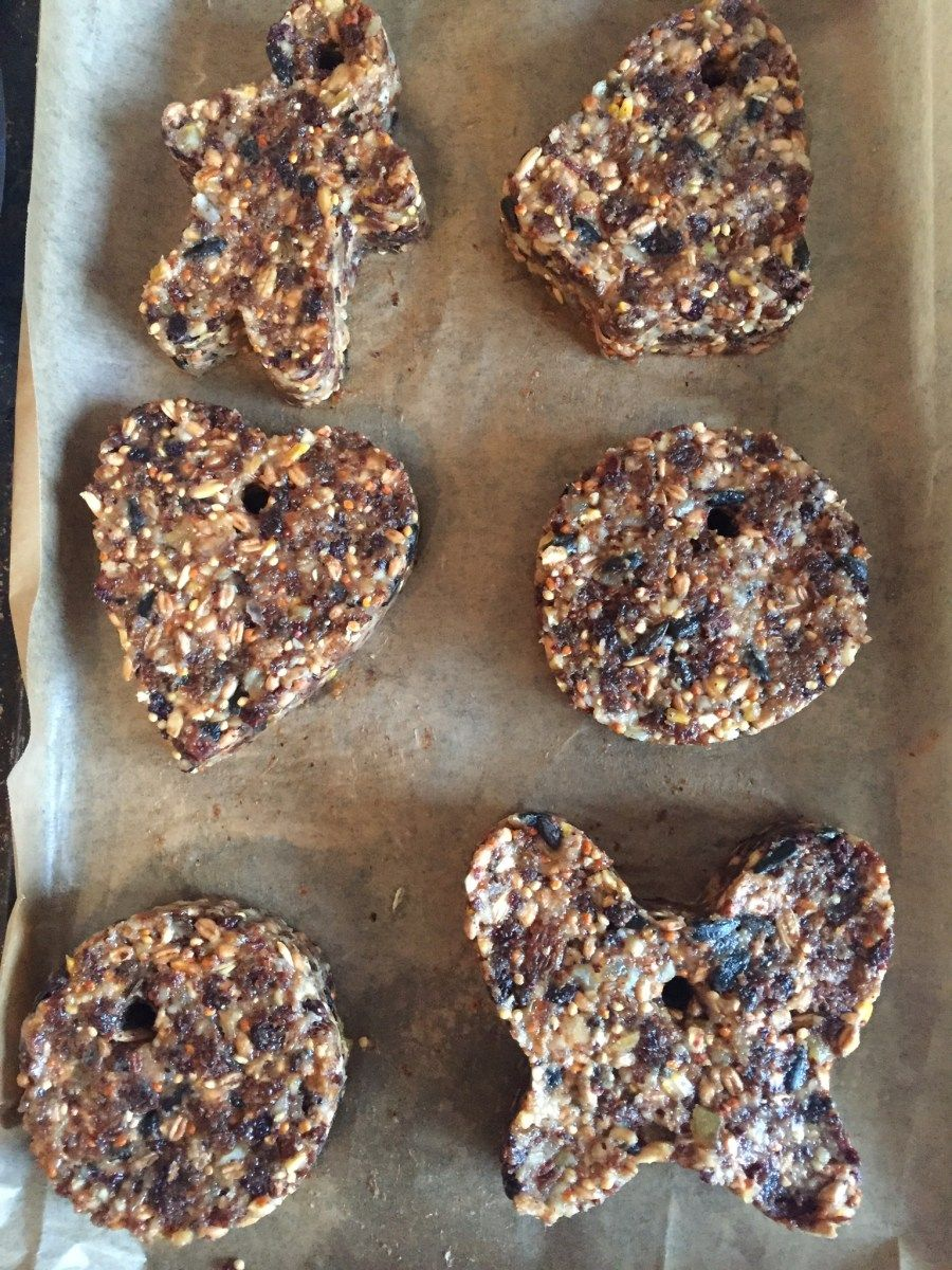 49++ Bird seed cakes lowes ideas in 2021