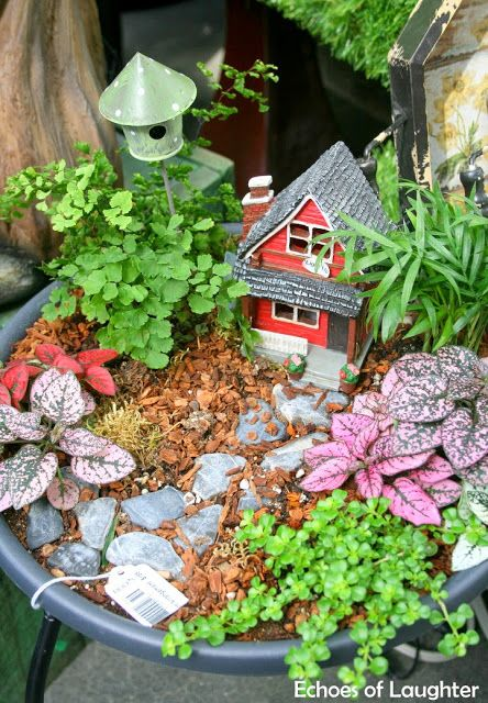 How To Make A Fairy Garden & 4 Other Fabulous Outdoor Plant & Flower