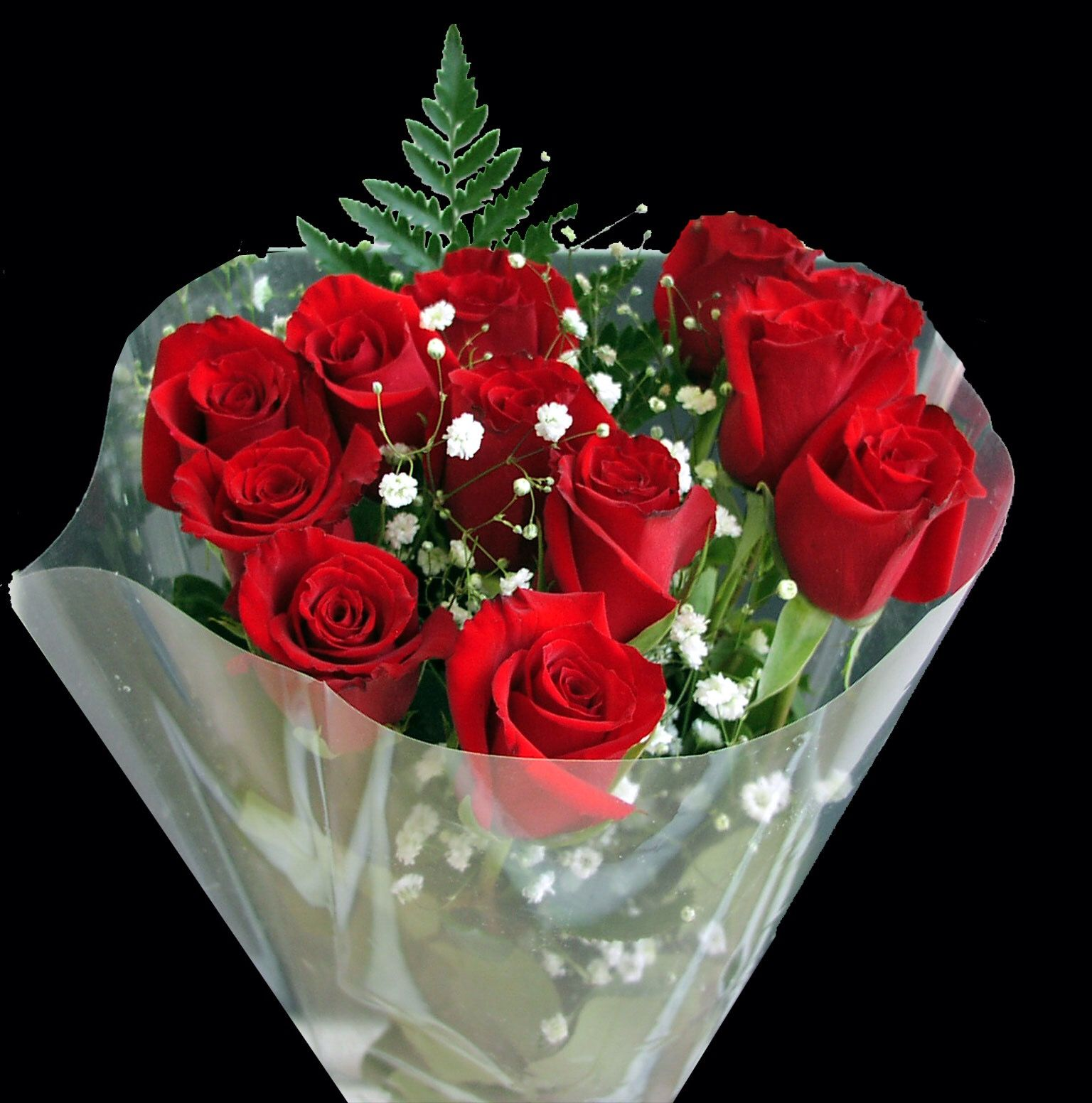 Pin by deisi kusztra on happy birthday pinterest happy birthday are a proud assertion that a ray of beauty out values all the utilities of the buy and flowers online with at izmirmasajfo