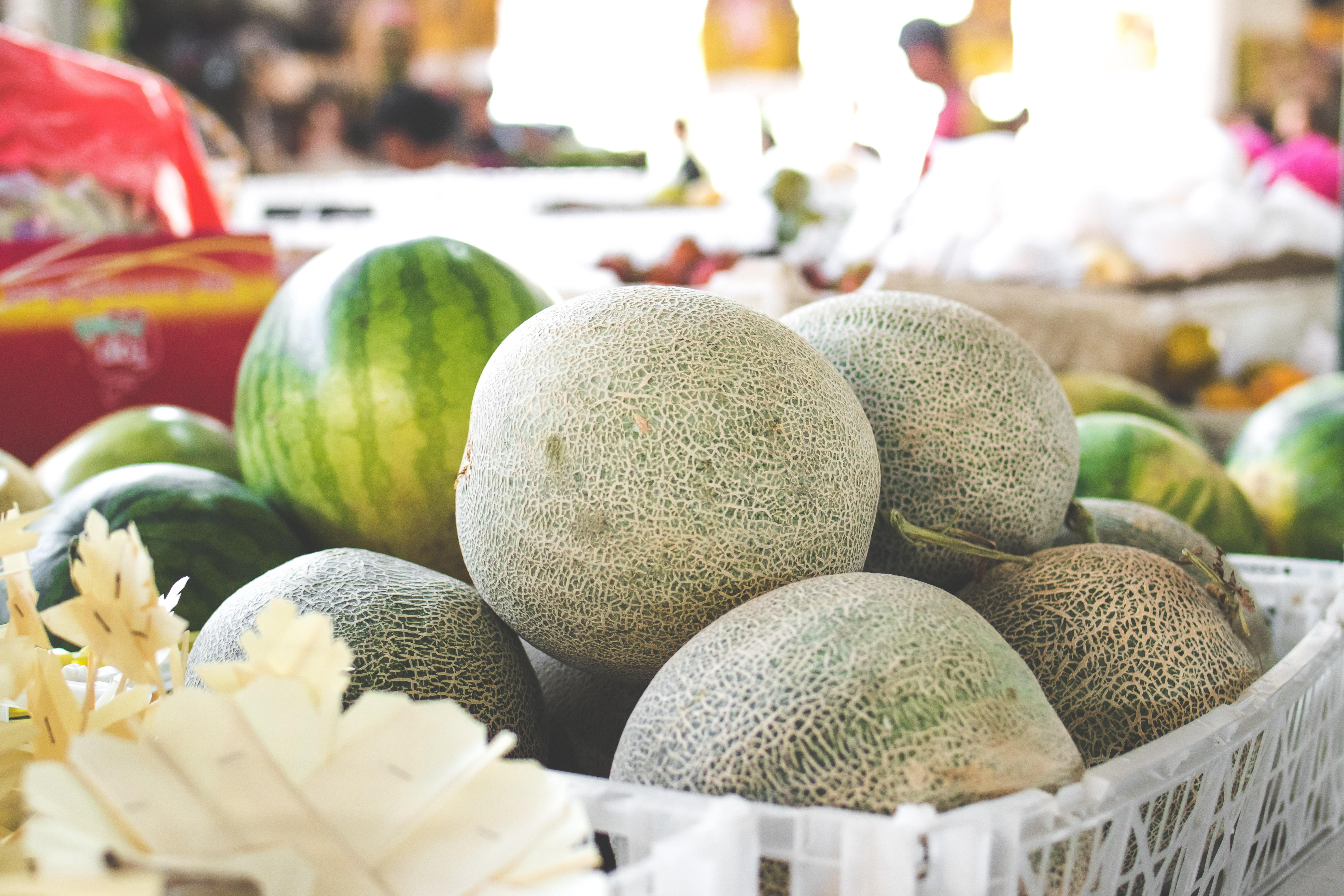 8 Small Melons Packed with Gigantic Flavor Tomato garden