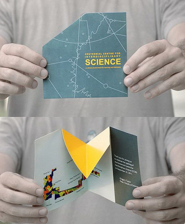 Pin By Faye Bordbar On Creative Brochures