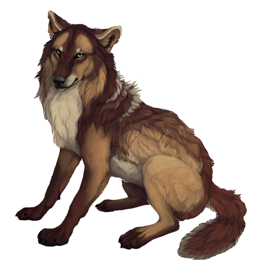 Pin on Wolves/Wolfs